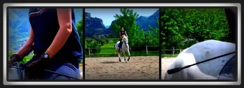 Horse riding - all rights reserved