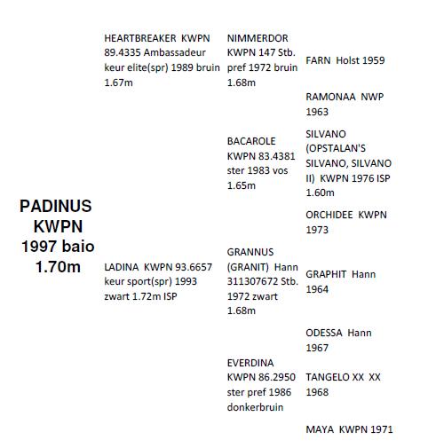 padinus_genealogia