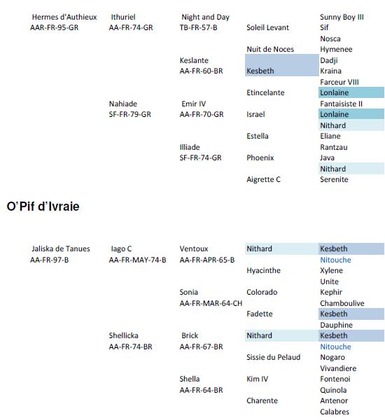 opifdivraie_genealogia
