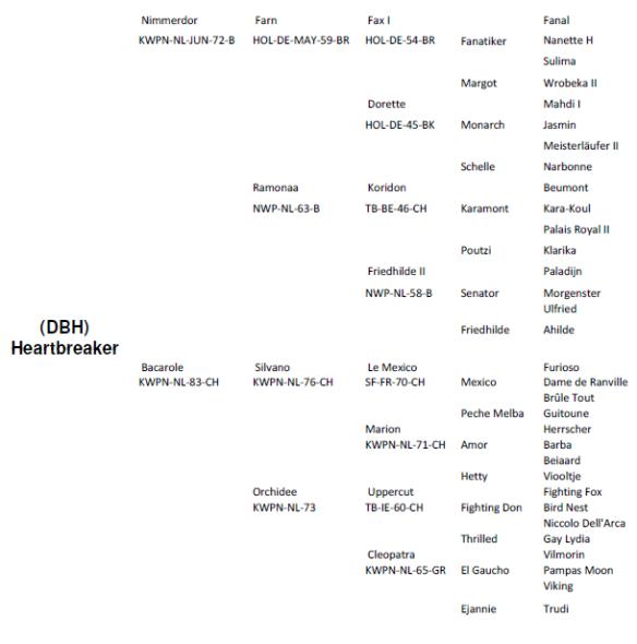 heartbreaker_genealogia