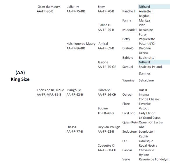 King_size_stallion_genealogia